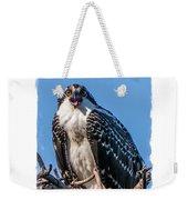 Osprey Surprise Party Card Weekender Tote Bag