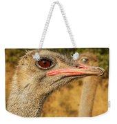 Ostrich Closeup Weekender Tote Bag by Jess Kraft
