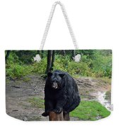 Oswald's Bear Weekender Tote Bag