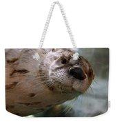Otter Be Lookin' At You Kid Weekender Tote Bag