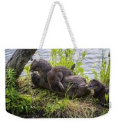 Otter Family Fun Weekender Tote Bag