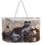 Otter Posing Weekender Tote Bag