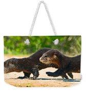 Otters Crossing The Road  Weekender Tote Bag