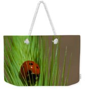 Out For A Snack Weekender Tote Bag