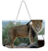 Out Of Africa  Lion 1 Weekender Tote Bag