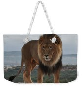Out Of Africa Lion 3 Weekender Tote Bag