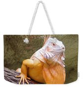 Out Of Africa Orange Lizard 1 Weekender Tote Bag
