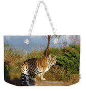 Out Of Africa  Tiger 1 Weekender Tote Bag