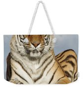 Out Of Africa Tiger 4 Weekender Tote Bag