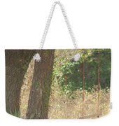 Outdoor Swing Weekender Tote Bag