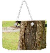 Oval Tree Art Weekender Tote Bag