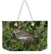 Ovenbird Weekender Tote Bag