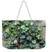 Overgrown Wall With Snail Weekender Tote Bag