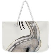 Oviraptor, A Small Dinosaur That Lived Weekender Tote Bag