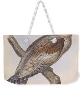 Owl Steanorninae Weekender Tote Bag