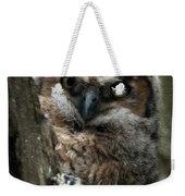 Owlet On The Watch Weekender Tote Bag