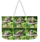 Owls Do Take Baths Weekender Tote Bag