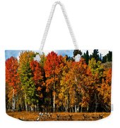 Oxbow Autumn Weekender Tote Bag