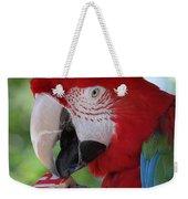 P Is For Parrot Weekender Tote Bag