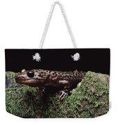 Pacific Giant Salamander On Mossy Rock Weekender Tote Bag