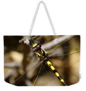 Pacific Spiketail Dragonfly On Mt Tamalpais 2 Weekender Tote Bag