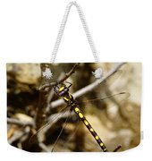Pacific Spiketail Dragonfly On Mt Tamalpais Weekender Tote Bag