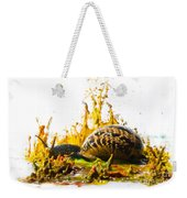 Paint Sculpture And Snail  Weekender Tote Bag