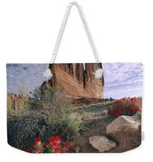 Paintbrush And  Organ Rock Weekender Tote Bag