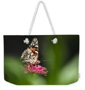 Painted Lady Butterfly At Rest Weekender Tote Bag by Christina Rollo