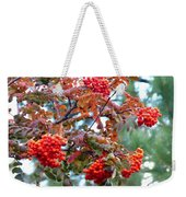 Painted Mountain Ash Berries Weekender Tote Bag