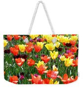 Painted Sunlit Tulips Weekender Tote Bag