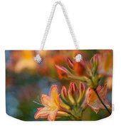 Painterly Rhodies Weekender Tote Bag