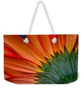 Painters Brush Weekender Tote Bag