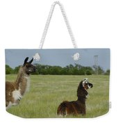 Pair Of Alpacas Weekender Tote Bag