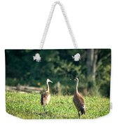 Pair Of Cranes Weekender Tote Bag