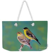 Pair Of Lesser Goldfinches Weekender Tote Bag