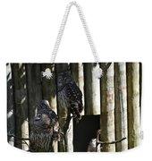 Pair Of Owls Weekender Tote Bag