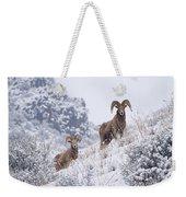 Pair Of Winter Rams Weekender Tote Bag