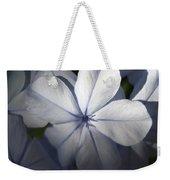 Pale Blue Plumbago Flower Close Up  Weekender Tote Bag