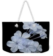 Pale Blue Plumbago Isolated On Black Background  Weekender Tote Bag