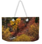 Palisades Creek Canyon Weekender Tote Bag
