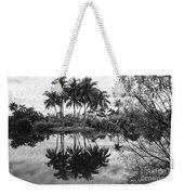 Palm Island  Weekender Tote Bag