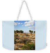 Palm Springs Indian Canyons View  Weekender Tote Bag