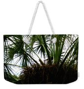 Palm Tree In Curacao Weekender Tote Bag