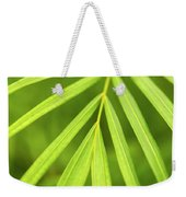 Palm Tree Leaf Weekender Tote Bag by Elena Elisseeva