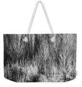 Panorama Winter Trees B And W Weekender Tote Bag