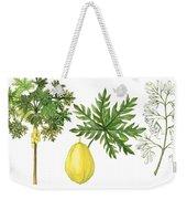 Papaya Weekender Tote Bag