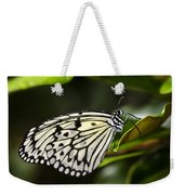 Paper Kite Butterfly On A Leaf  Weekender Tote Bag
