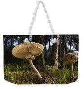 Parasol Mushrooms Pair In Forest Spain Weekender Tote Bag