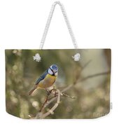 Parus Sitting On A Thin Branch Weekender Tote Bag